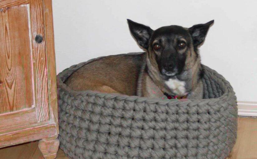 Gehäkelter Sitzhocker oder Hundekorb aus Textilos